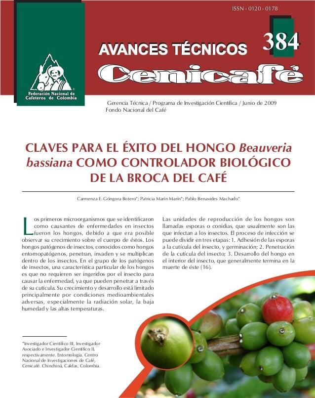 384384 ISSN - 0120 - 0178ISSN - 0120 - 0178 CLAVES PARA EL ÉXITO DEL HONGO Beauveria bassiana COMO CONTROLADOR BIOLÓGICO D...