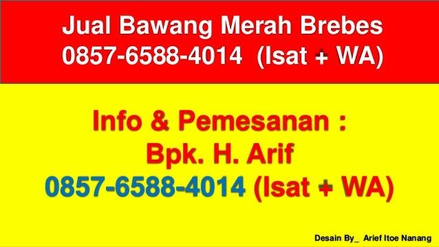 Desain By_ Arief Itoe Nanang Info & Pemesanan : Bpk. H. Arif 0857-6588-4014 (Isat + WA) Jual Bawang Merah Brebes 0857-6588...