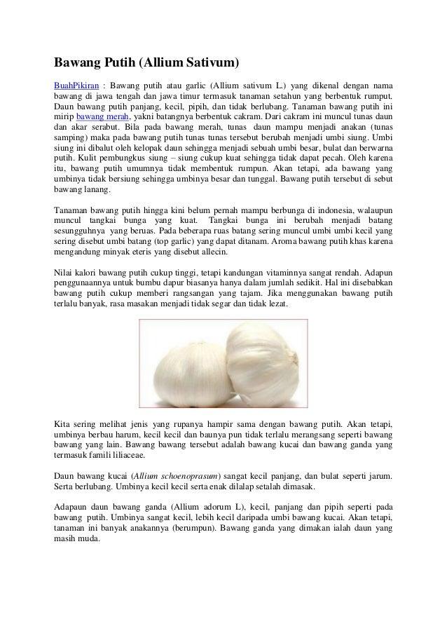 Bawang Putih (Allium Sativum) BuahPikiran : Bawang putih atau garlic (Allium sativum L.) yang dikenal dengan nama bawang d...