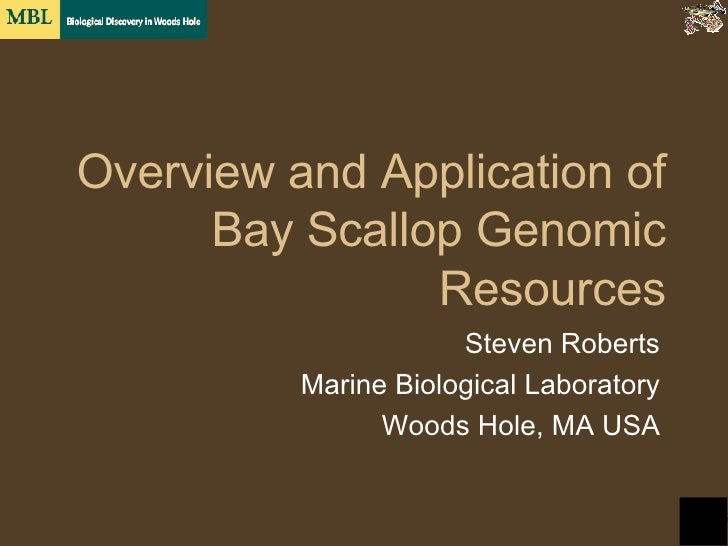 Overview and Application of Bay Scallop Genomic Resources Steven Roberts Marine Biological Laboratory Woods Hole, MA USA