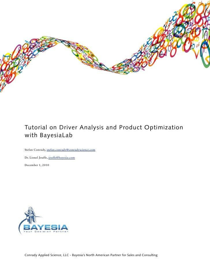 Bayesia Lab Driver Analysis (Psem V15)