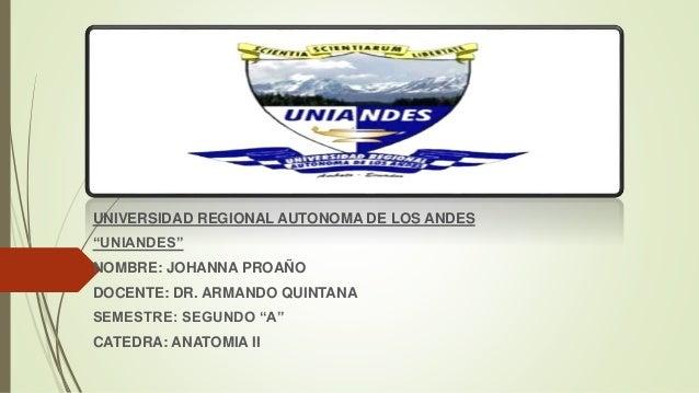 "UNIVERSIDAD REGIONAL AUTONOMA DE LOS ANDES ""UNIANDES"" NOMBRE: JOHANNA PROAÑO DOCENTE: DR. ARMANDO QUINTANA SEMESTRE: SEGUN..."