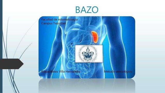 BAZO Edgar Alexis Villa Hernández Método semiológico Facultad de estomatología Campus Teziutlán