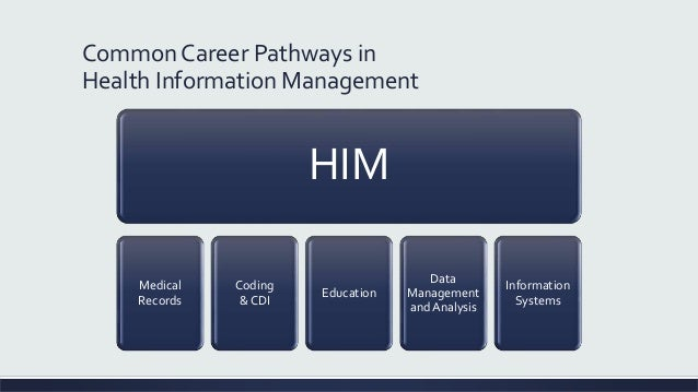 recommendation of a management information system