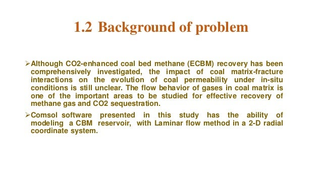 coal bed methane ppt  software