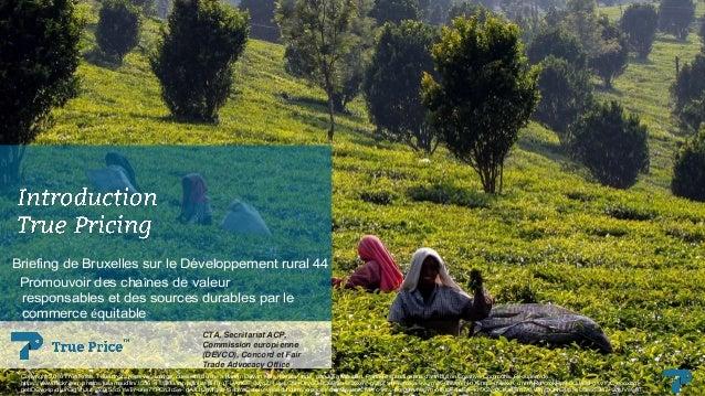 Briefing de Bruxelles sur le Développement rural 44 Promouvoir des chaînes de valeur responsables et des sources durables ...