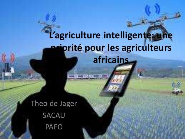 L'agriculture intelligente: une priorité pour les agriculteurs africains Theo de Jager SACAU PAFO