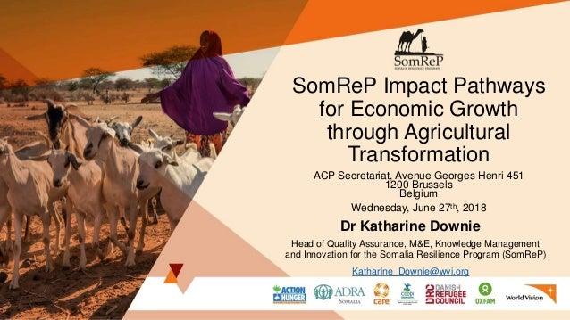 SomReP Impact Pathways for Economic Growth through Agricultural Transformation ACP Secretariat, Avenue Georges Henri 451 1...