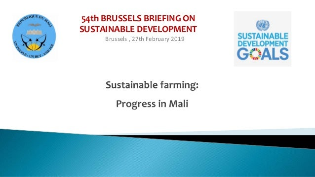 54th BRUSSELS BRIEFING ON SUSTAINABLE DEVELOPMENT Brussels , 27th February 2019