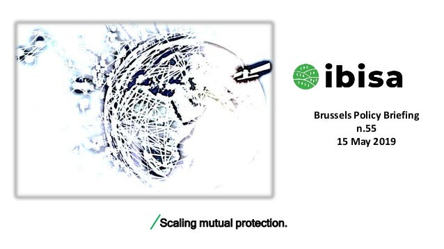 Scaling mutual protection. Brussels Policy Briefing n.55 15 May 2019