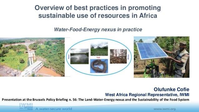 Olufunke Cofie West Africa Regional Representative, IWMI Presentation at the Brussels Policy Briefing n. 56: The Land-Wate...
