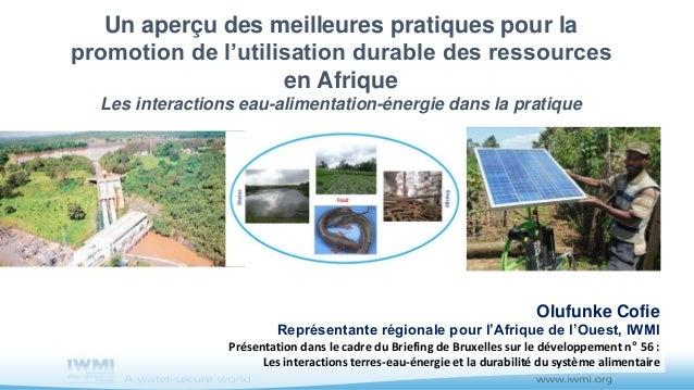 Olufunke Cofie Représentante régionale pour l'Afrique de l'Ouest, IWMI Présentation dans le cadre du Briefing de Bruxelles...