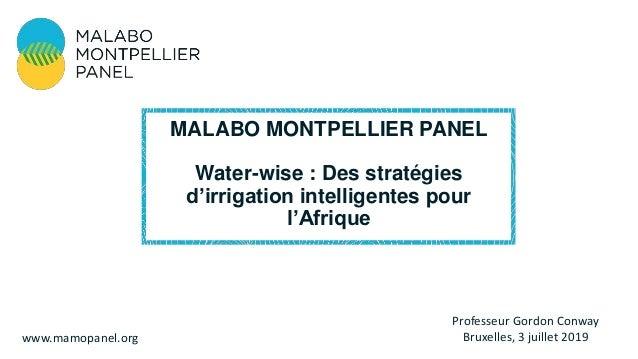 Professeur Gordon Conway Bruxelles, 3 juillet 2019www.mamopanel.org MALABO MONTPELLIER PANEL Water-wise : Des stratégies d...