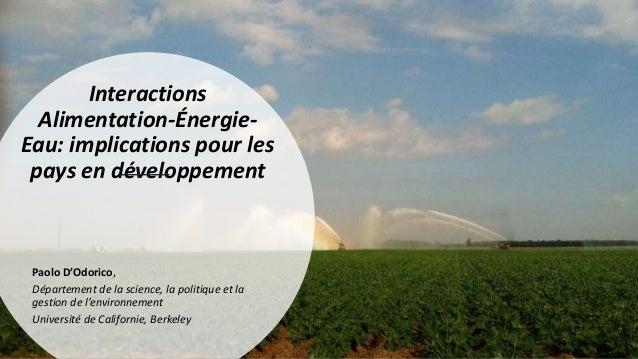 Interactions Alimentation-Énergie- Eau: implications pour les pays en développement Paolo D'Odorico, Département de la sci...