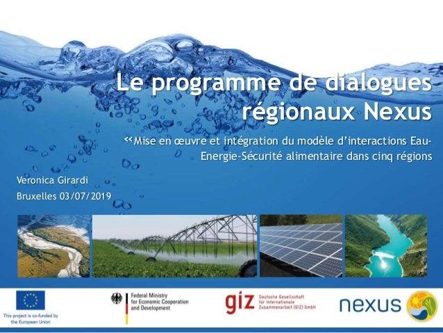 Le programme de dialogues régionaux Nexus «Mise en œuvre et intégration du modèle d'interactions Eau- Energie-Sécurité ali...