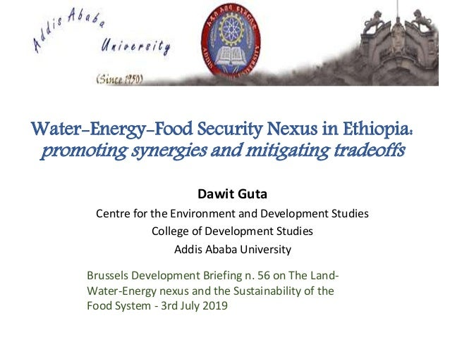 Water-Energy-Food Security Nexus in Ethiopia: promoting synergies and mitigating tradeoffs Dawit Guta Centre for the Envir...
