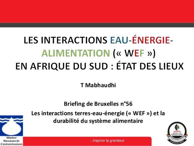 ...Inspirer la grandeur T Mabhaudhi Briefing de Bruxelles n°56 Les interactions terres-eau-énergie (« WEF ») et la durabil...