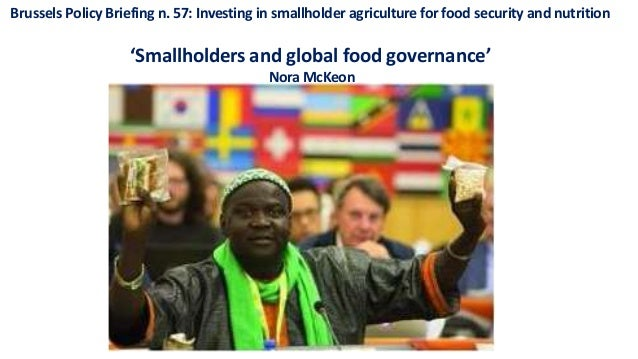 Brussels Policy Briefing n. 57: Investing in smallholder agriculture for food security and nutrition 'Smallholders and glo...