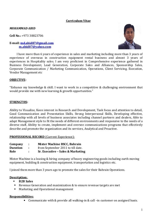 Curriculum vitae for sales executive