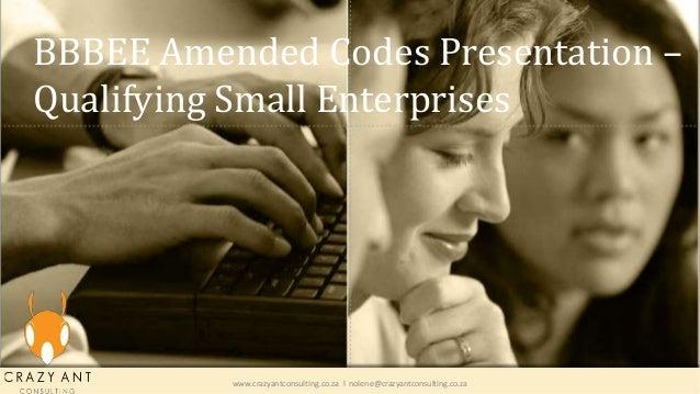 BBBEE Amended Codes Presentation – Qualifying Small Enterprises www.crazyantconsulting.co.za l nolene@crazyantconsulting.c...