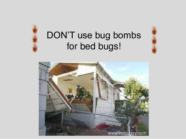 Can You Use A Bug Bomb To Kill Bed Bugs