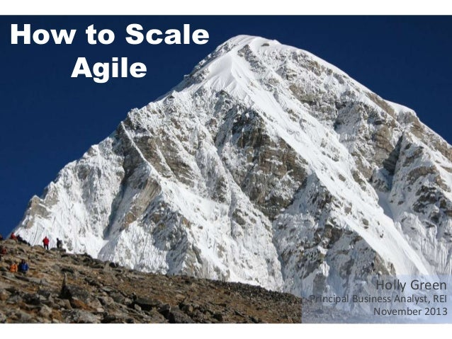 How to Scale Agile  Holly Green Principal Business Analyst, REI November 2013