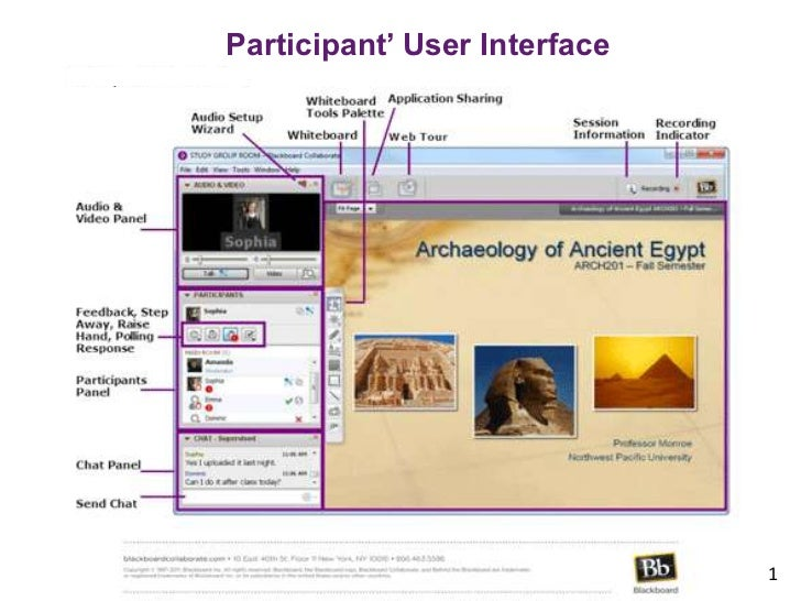 Participant' User Interface                              1