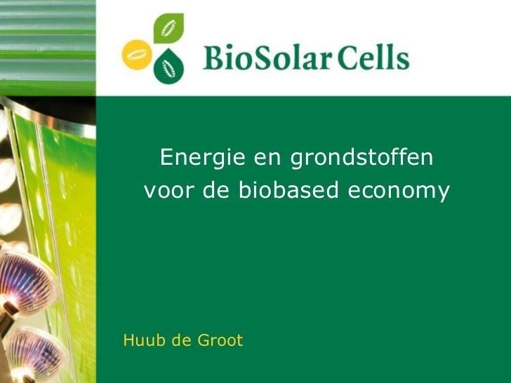 Energie en grondstoffen  voor de biobased economyHuub de Groot