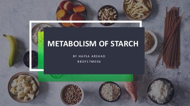 METABOLISM OF STARCH B Y H A F S A A R S H A D B B O F 1 7 M 0 0 6