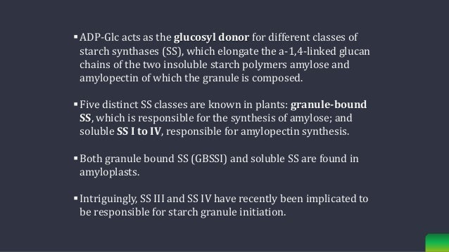  Interestingly, starch synthesis also involves two types of debranching enzymes (isoamylase; glycogen 6- glucanohydrolase...