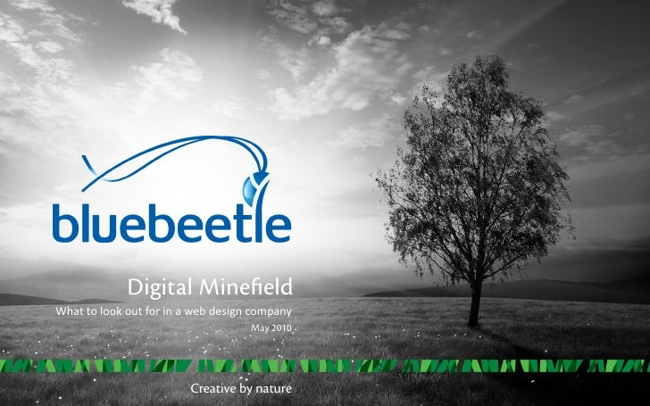 Digital Minefield What  to  look  out  for  in  a  web  design  company                                ...