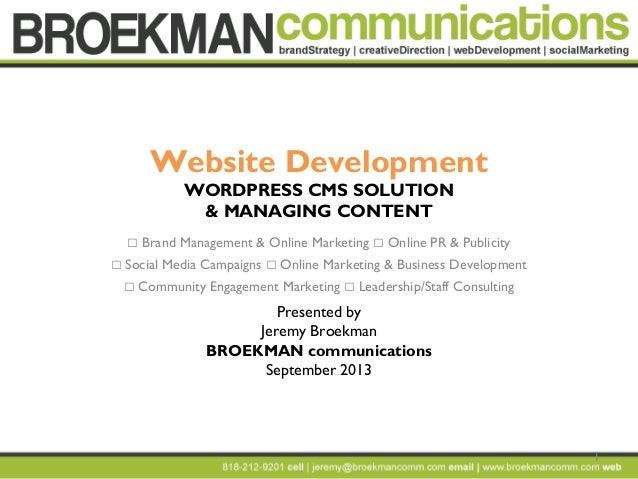 1 Website Development WORDPRESS CMS SOLUTION & MANAGING CONTENT  Brand Management & Online Marketing  Online PR & Public...