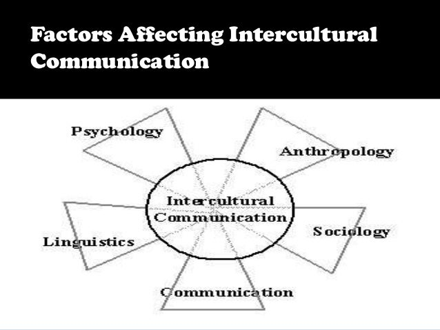 Poor Communication Between Different Cultural Groups Within a Country Essay Sample