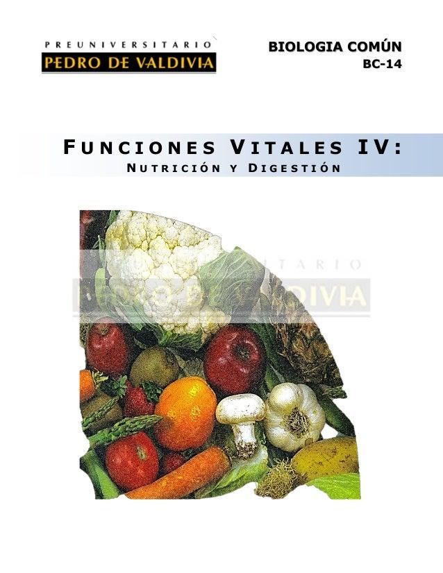 BIOLOGIA COMÚN BC-14  FUNCIONES VITALES IV: NUTRICIÓN Y DIGESTIÓN