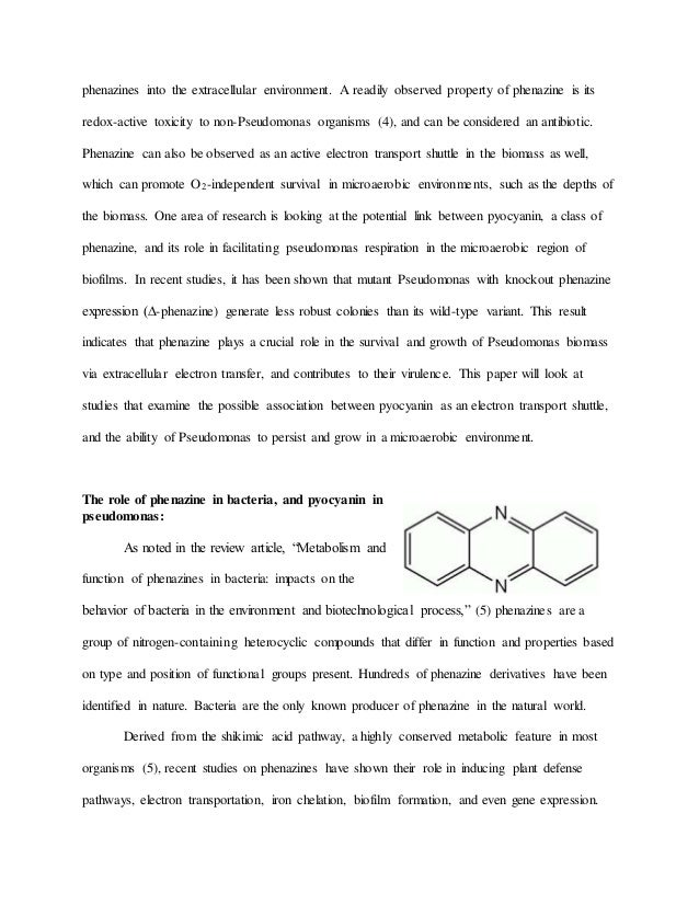 microbiology research paper