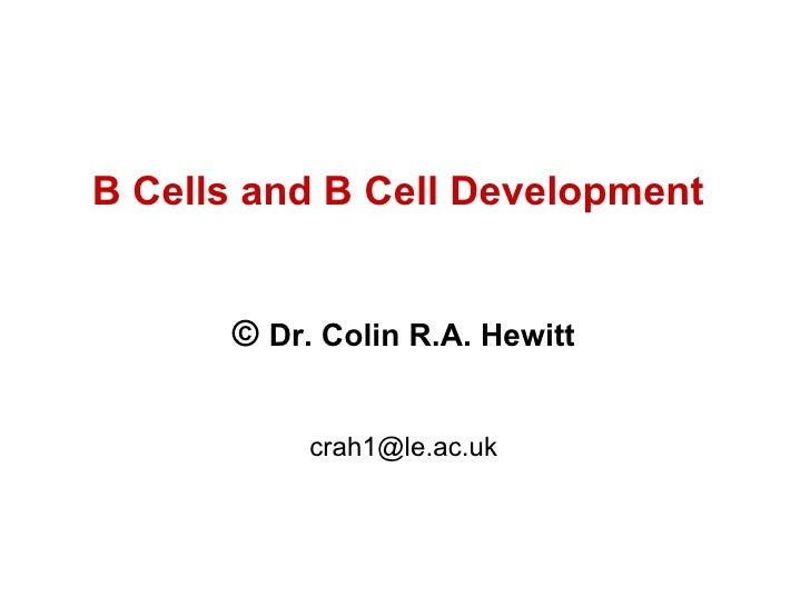 B Cells and B Cell Development  ©  Dr. Colin R.A. Hewitt [email_address]