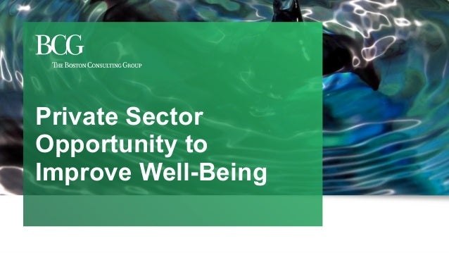 1 Private Sector Opportunity to Improve Well-Being