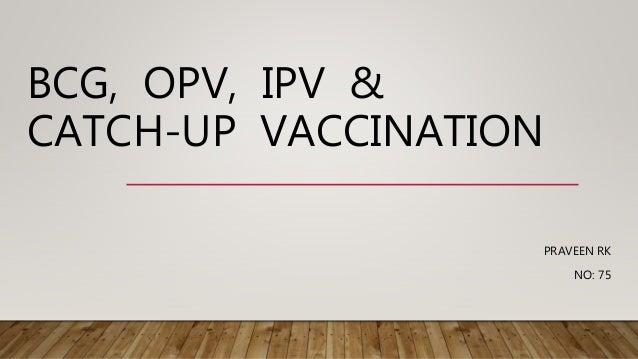 BCG, OPV, IPV & CATCH-UP VACCINATION PRAVEEN RK NO: 75