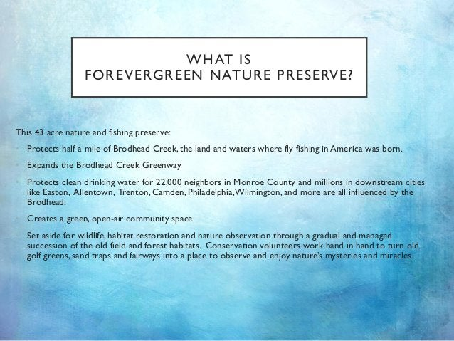 WHAT IS FOREVERGREEN NATURE PRESERVE? This 43 acre nature and fishing preserve: • Protects half a mile of Brodhead Creek, ...