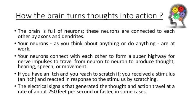 How the brain turns thoughts into action ? • The brain is full of neurons; these neurons are connected to each other by ax...