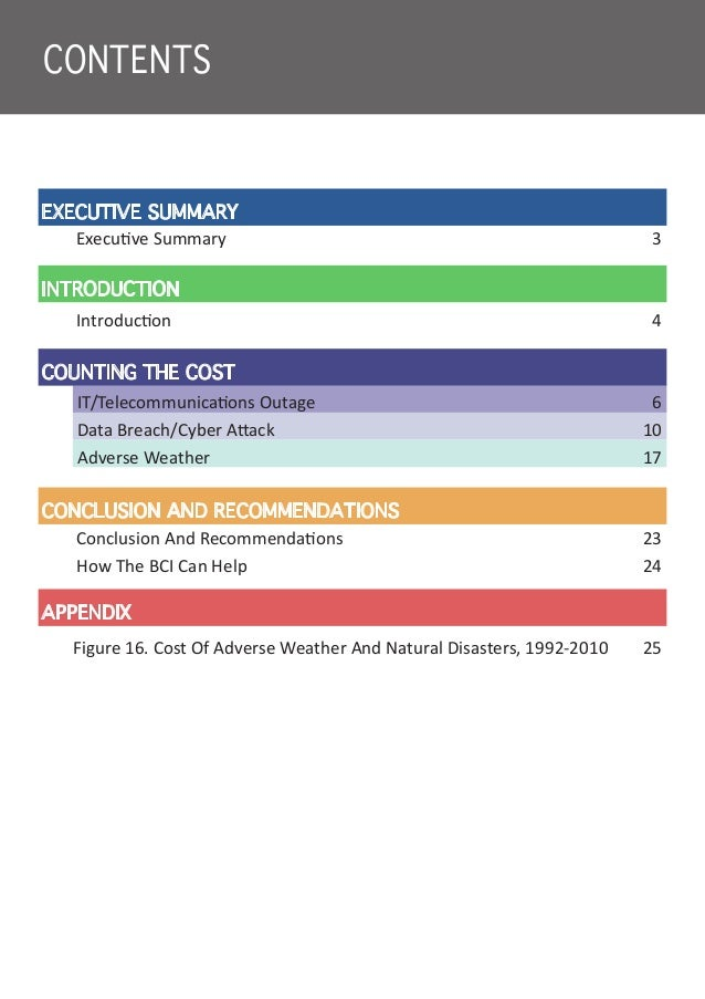 BCI Counting The Cost Slide 3