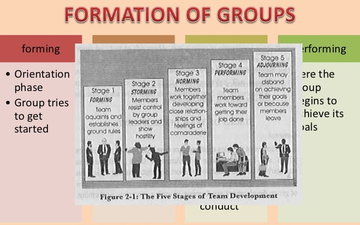 forming        Storming       Norming         Performing• Orientation   • Members      • Progress       • Here the  phase ...