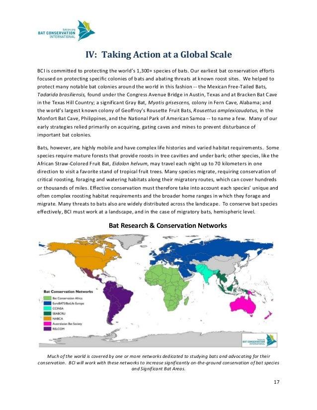 Global forex strategies austin tx