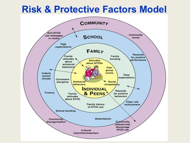 risk factor prevention paradigm Abstract the rhetoric and reality of the 'risk factor prevention paradigm' approach to preventing and reducing youth offending.