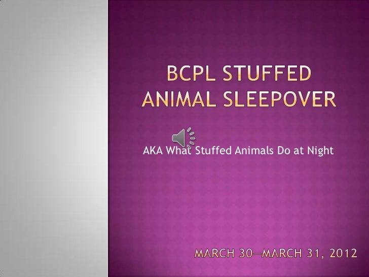 AKA What Stuffed Animals Do at Night