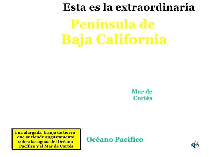 Una alargada  franja de tierra  que   se tiende augustamente  sobre las aguas del Océano  Pacífico y el Mar de Cortés Pení...
