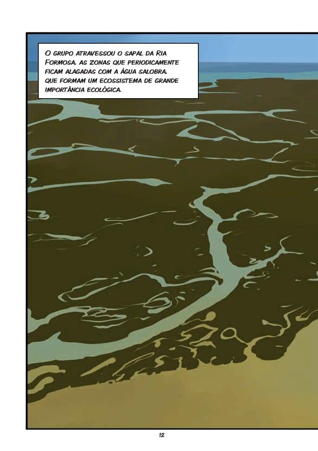 12 O grupo atravessou o sapal da Ria Formosa, as zonas que periodicamente ficam alagadas com a água salobra, que formam um...
