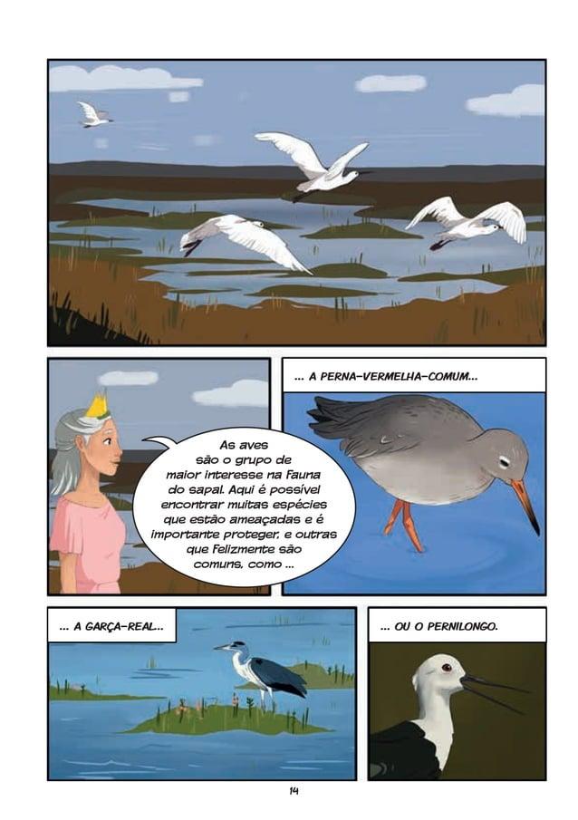 14 … a perna-vermelha-comum… … a garça-real… … ou o pernilongo. As aves são o grupo de maior interesse na fauna do sapal. ...