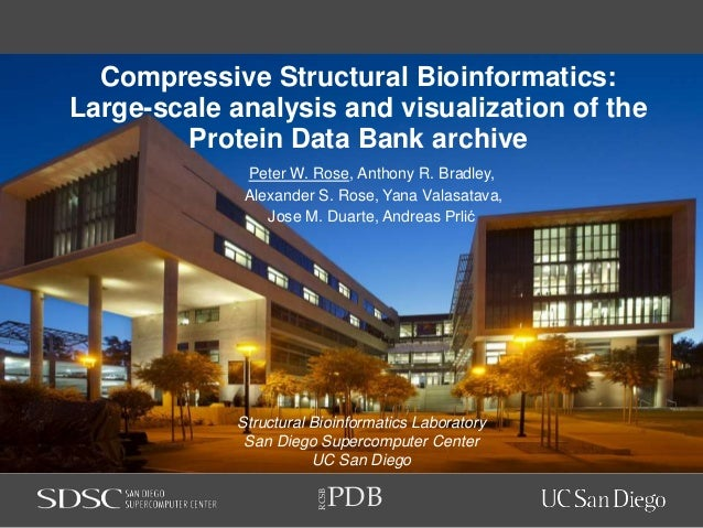 PDB RCSB Compressive Structural Bioinformatics: Large-scale analysis and visualization of the Protein Data Bank archive Pe...