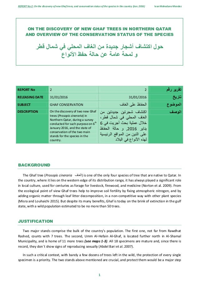 Report no 2 new ghaf specimens found in northern qatar and overview report no 2 on the discovery of new ghaf trees and conservation status of altavistaventures Image collections
